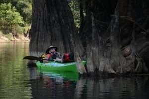 Suwannee River - Okefenokee Swamp
